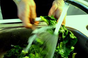 Spinat kochen